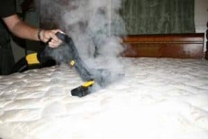bed bug killing machine