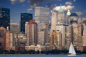 New York City Bed Bug