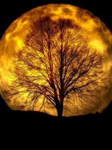 moon-165487_1280