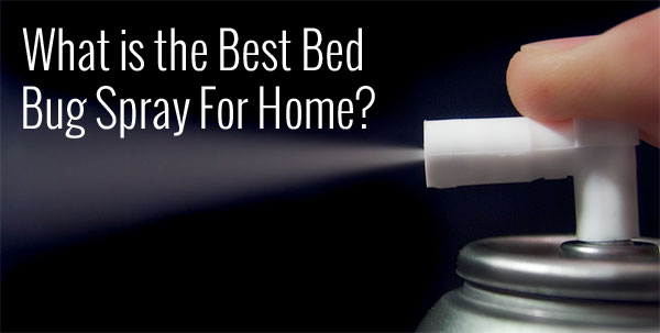 What Is The Best Bed Bug Spray For Home