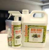 what kills bed bugs? - bed bug treatment site