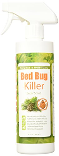 New Bed Bug Treatment Process In 2015