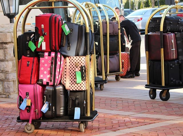 Bed Bugs Luggage
