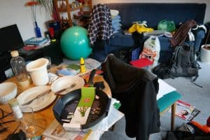 Bed bugs and clutter