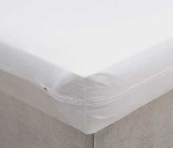 it is important to check the size of the zipper teeth when you purchase a mattress cover large zipper teeth will allow bed bugs to enter or exit the