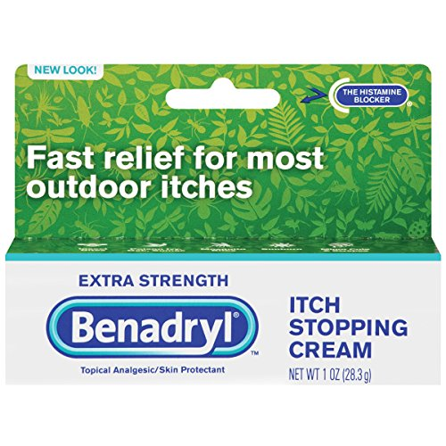 Bed Bug Rashes