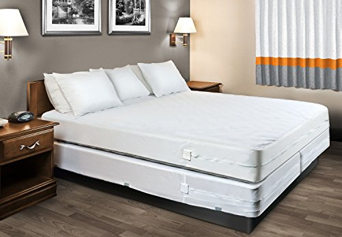 the easiest way to eliminate bed bugs is to avoid any chances of infestation of these pests in the first place naturally interiors and its - Bed Bug Mattress Covers