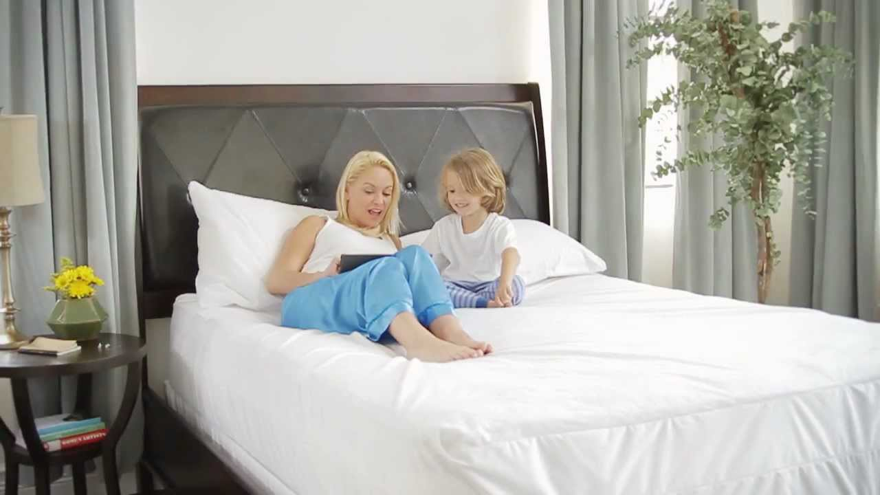 Mattress Covers protect you dust mites